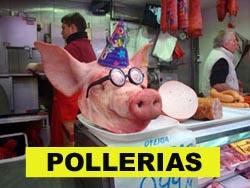 138PolleriasP