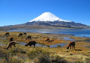 151Parinacota_volcanoP