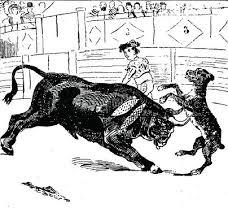 165el-perro-paco03-en-los-toros