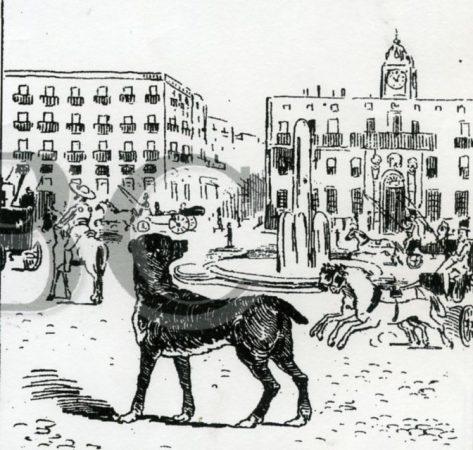 165el-perro-paco10-en-la-puerta-de-alcalc3a1