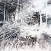 Senderos-del-bosque-2020.-Acrilico-y-lapiz-sobre-lienzo-180-x-180-cm.-1